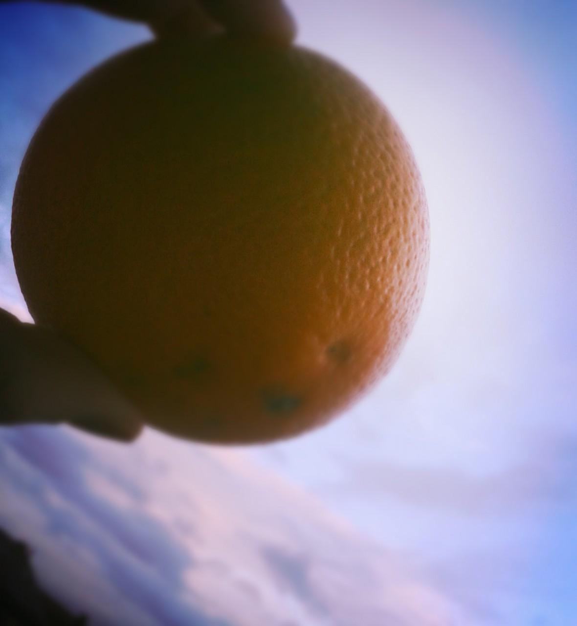 Orangen-Meerrettich-Smoothie